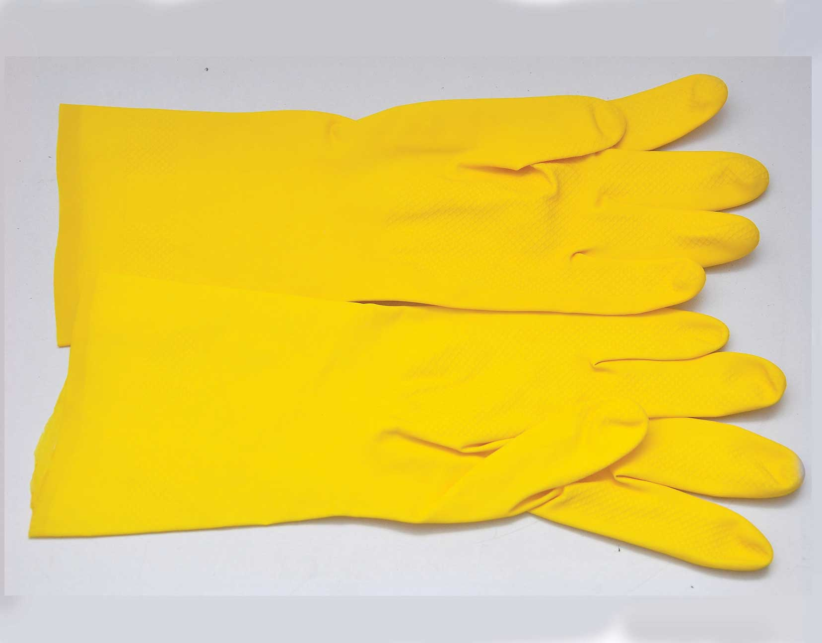 055_Hand Gloves (Examnation)